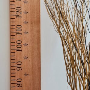 Ruler Growth Chart (Plain)
