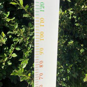 Rainbow Ruler Growth Chart